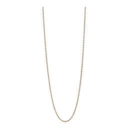 Long Anchor chain