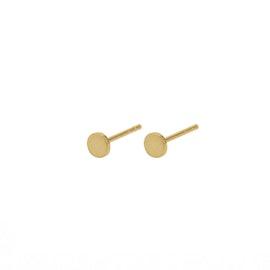 Mini Coin earsticks