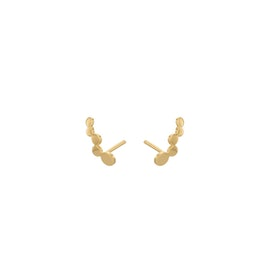 Sheen earsticks