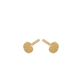 Copenhagen earsticks