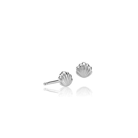 Sea Shell earsticks von Sistie in Silber Sterling 925