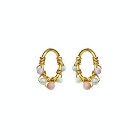 Fiona Earrings Multi