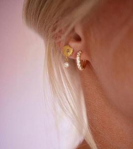 Bay Scallop earrings