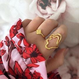 Balia ring