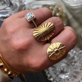 Spring ring aus A-Hjort
