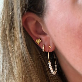 Nature earsticks