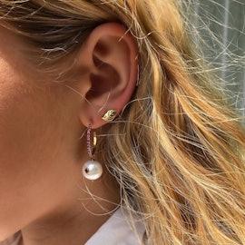 Small Leaf earsticks