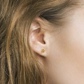 Clover earsticks