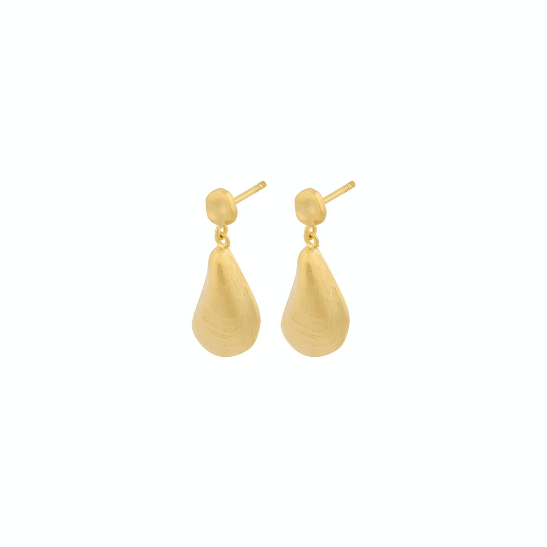 Seashell Earrings von Pernille Corydon in Vergoldet-Silber Sterling 925